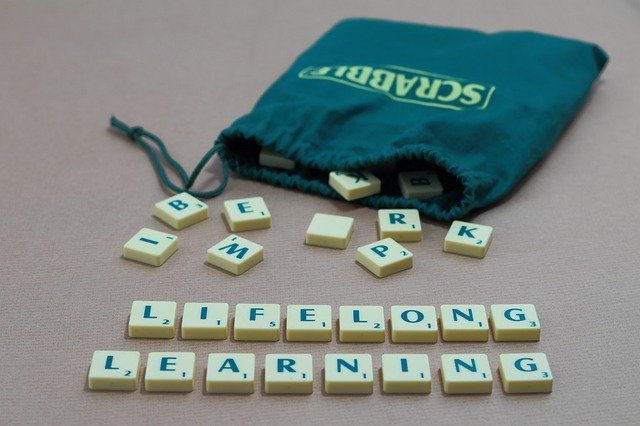 Scrabble bag with letters spelling life long learning for domain buyers market